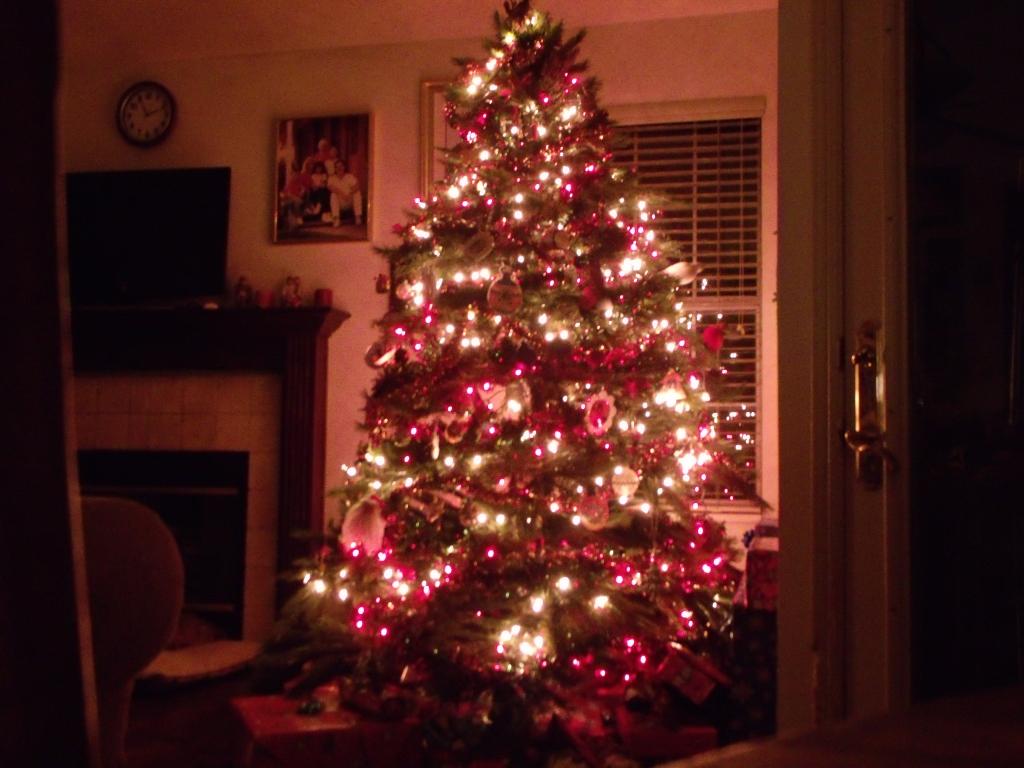 Christmas Morn....