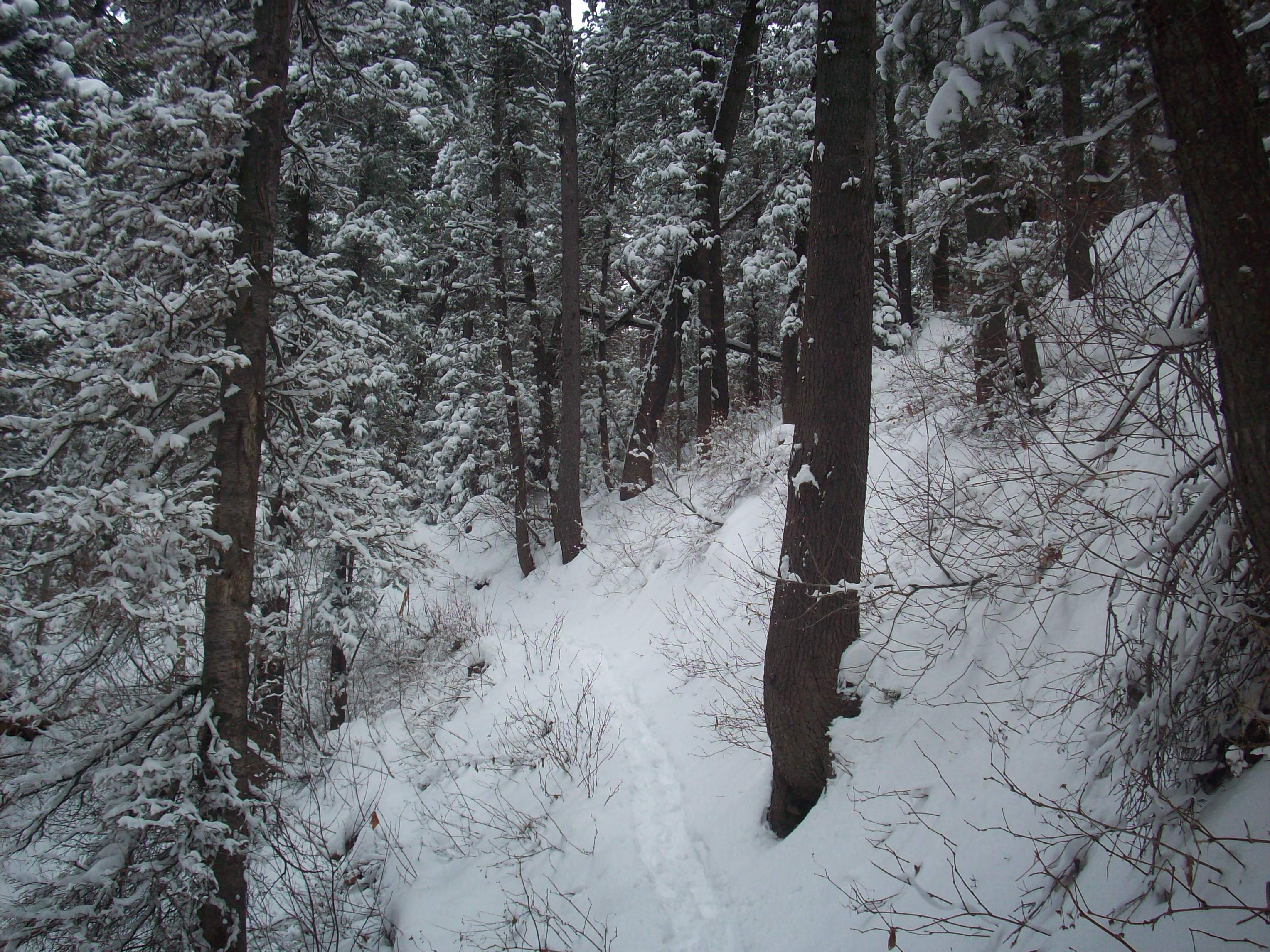 Snowy Trail Royalty Free Stock Images - Image: 36053799