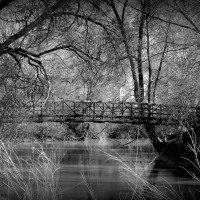 Bridge over Gentle Waters....