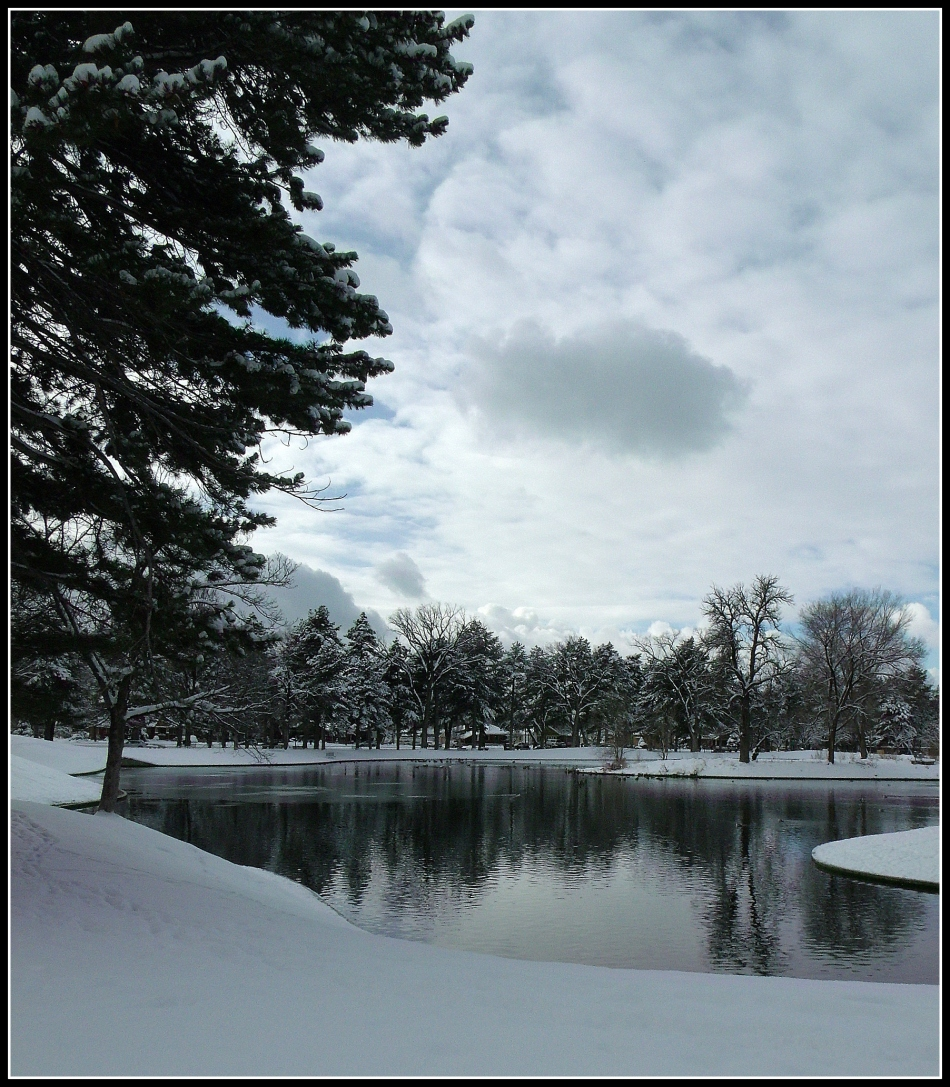 Liberty Park pond portrait in December