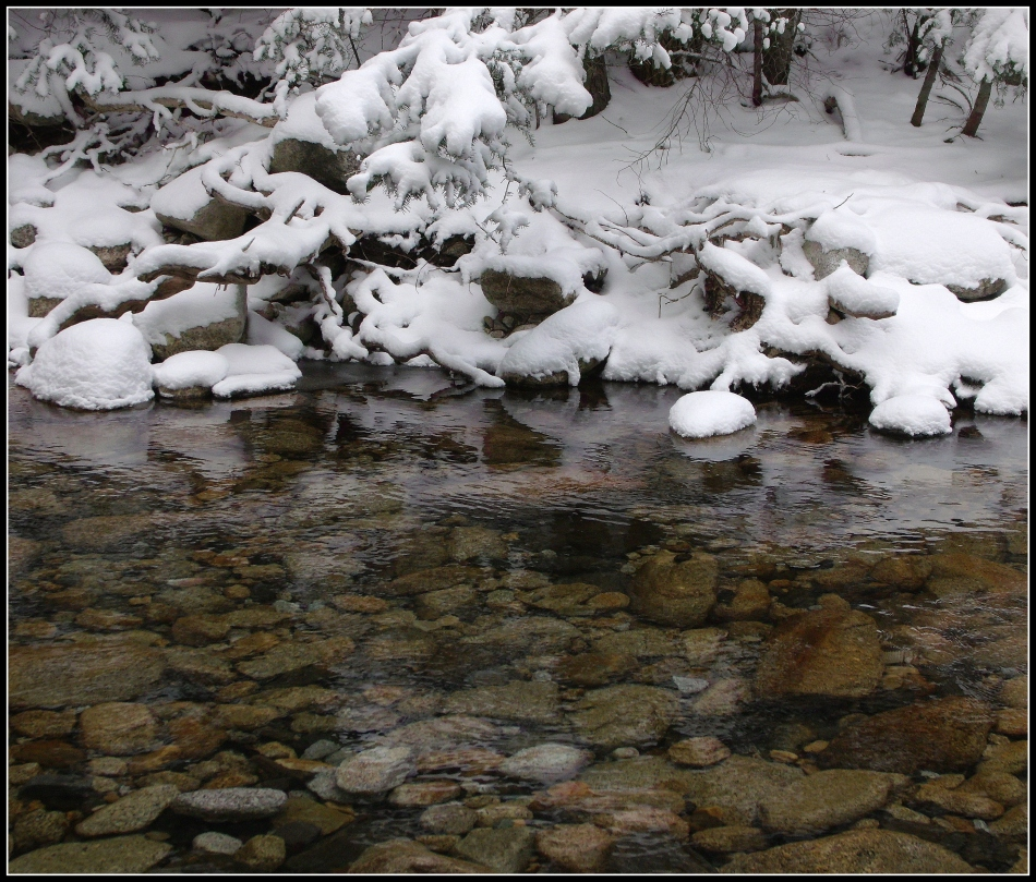 Snowy stream-bank, Little Cottonwood Canyon Stream