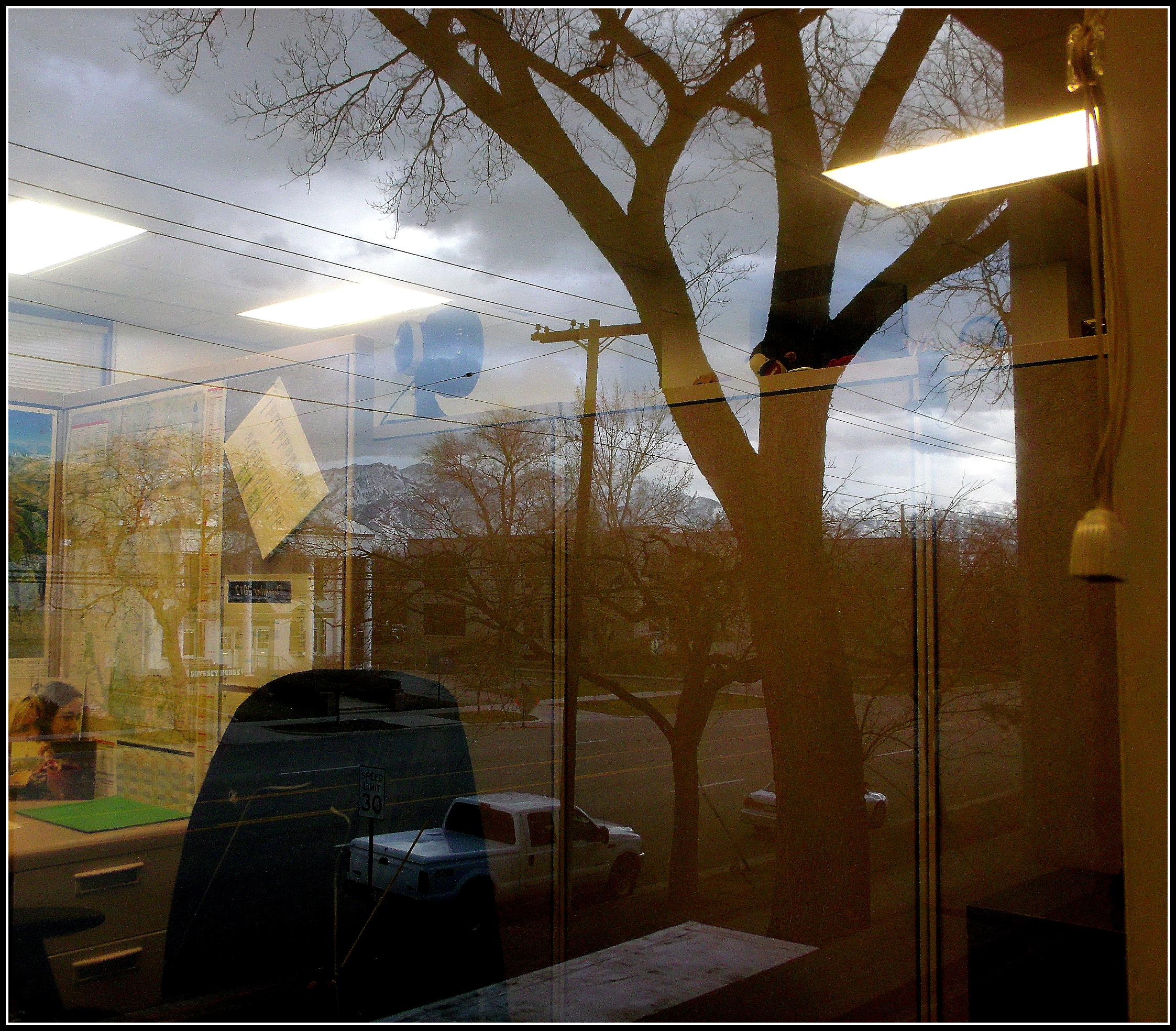 Work window reflection