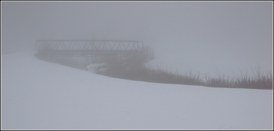 bridge with reeds and fog