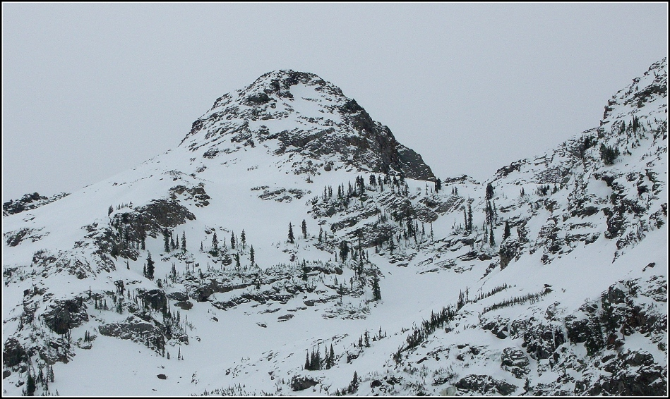 Dromedary Peak in January
