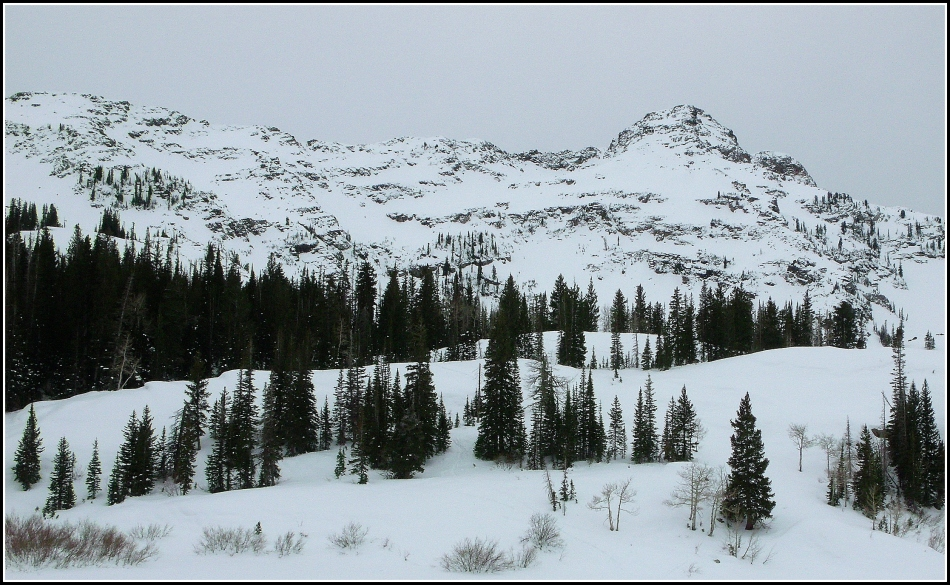 Dromedary Peak under Snow