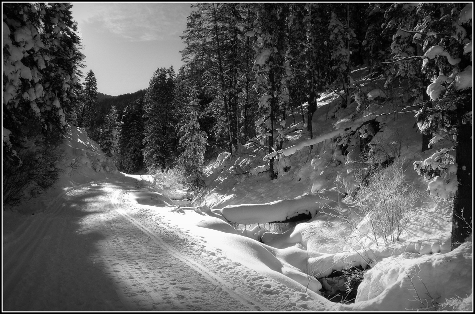 Millcreek Winter in black and white