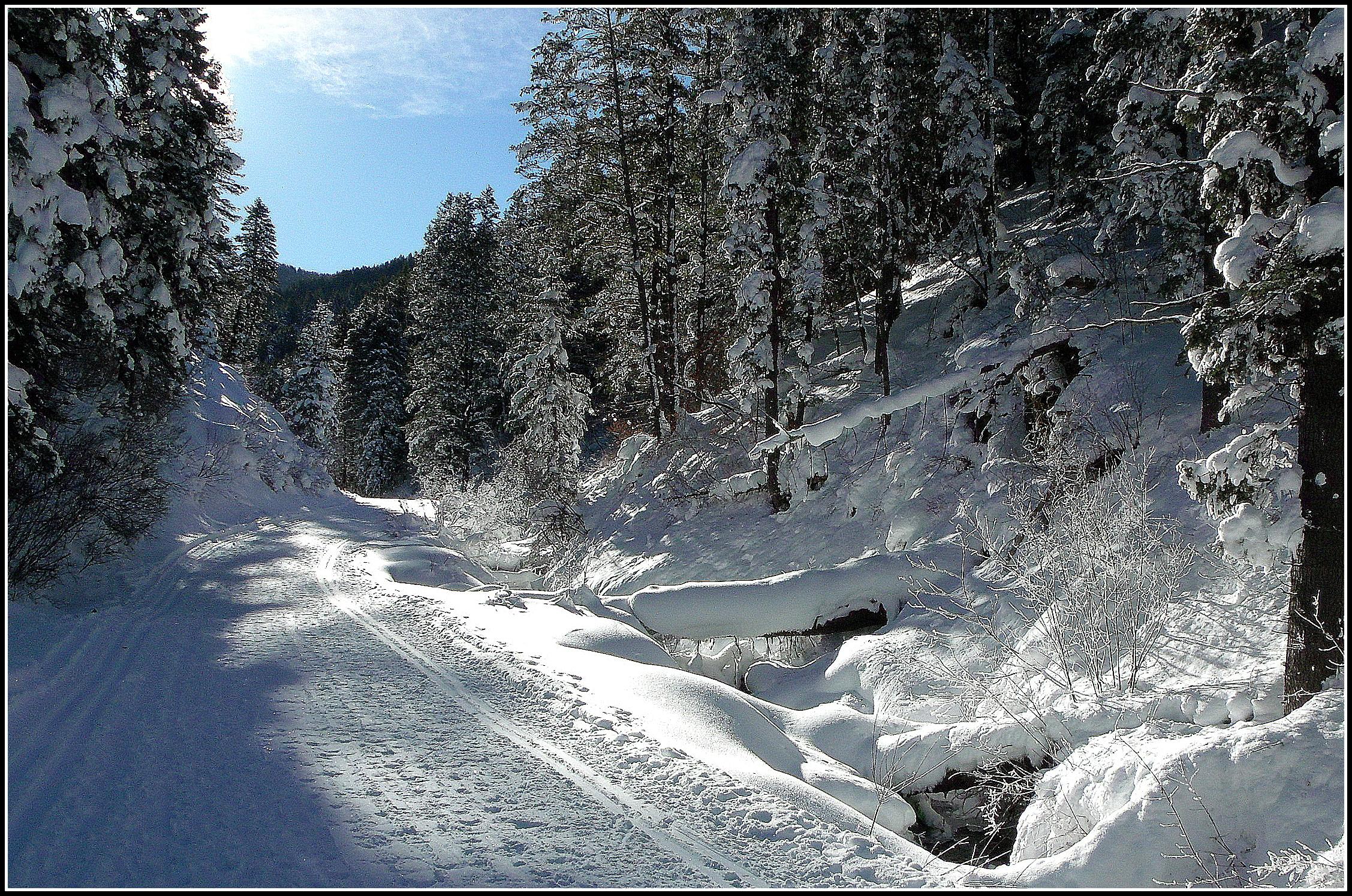 Millcreek Winter in color