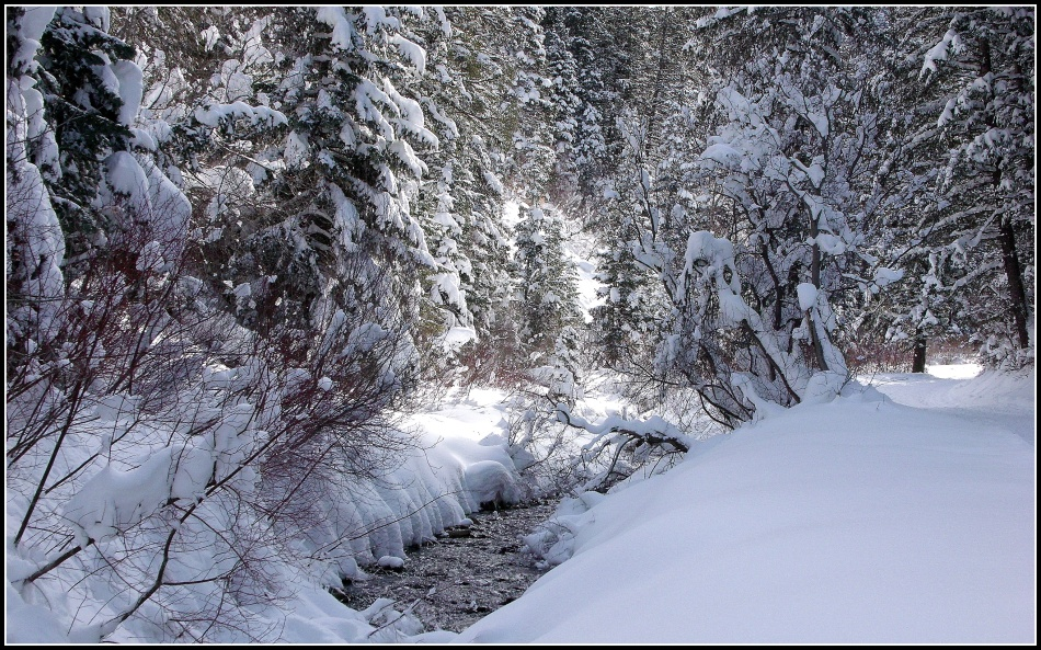 Snowy Millcreek Canyon Stream 1