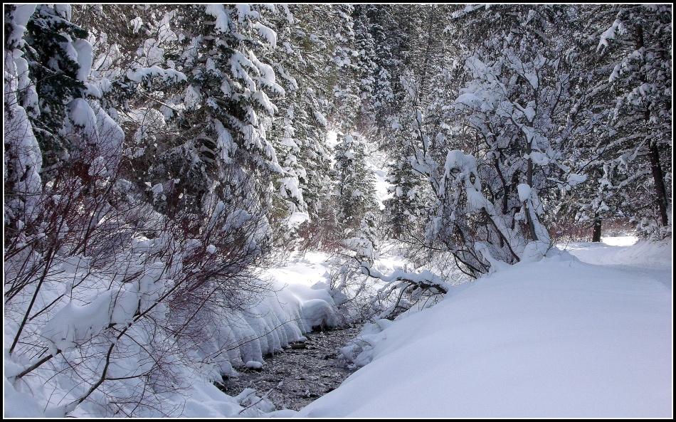 Snowy Millcreek Canyon Stream 1
