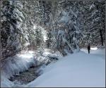 Snowy Millcreek Canyon Stream2