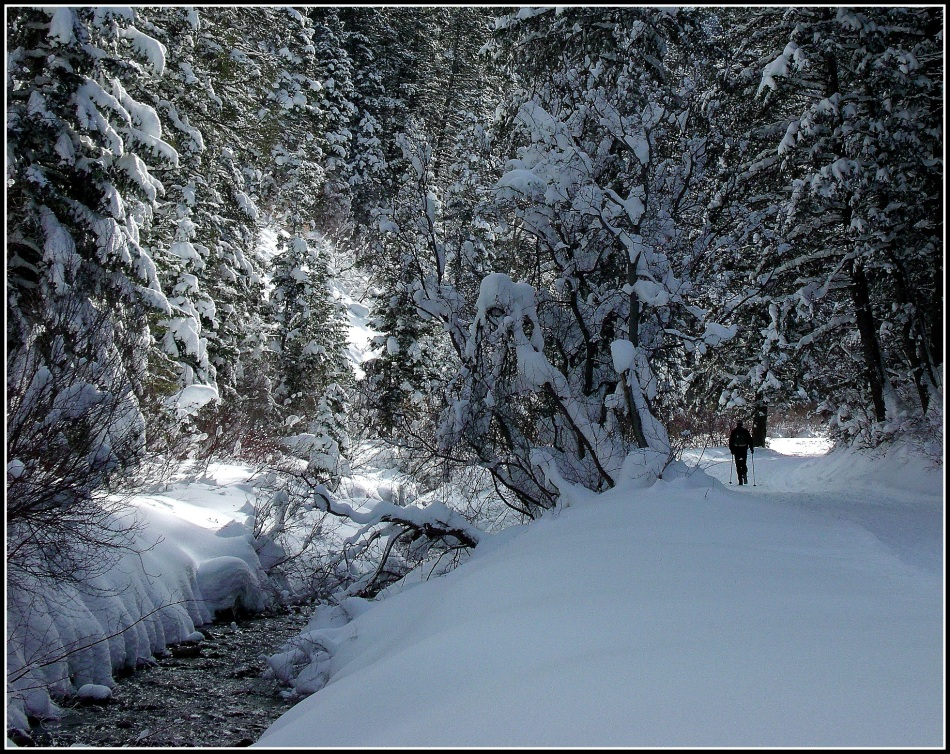 Snowy Millcreek Canyon Stream 3