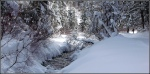 Snowy Millcreek Canyon Stream5