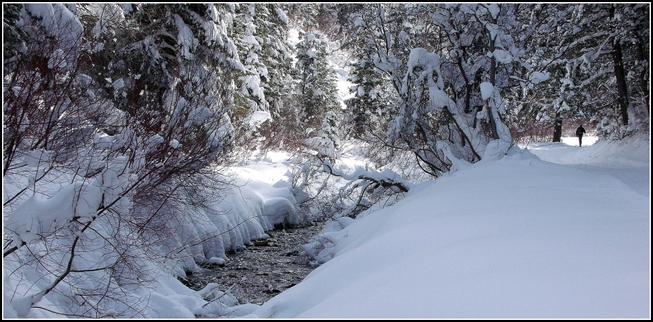 Snowy Millcreek Canyon Stream 5