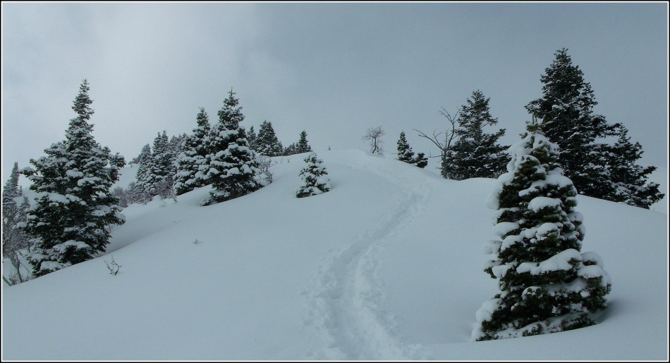 Snow trail to Grandeur Peak Utah