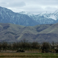 Farmland and mountains in Goshen, Utah