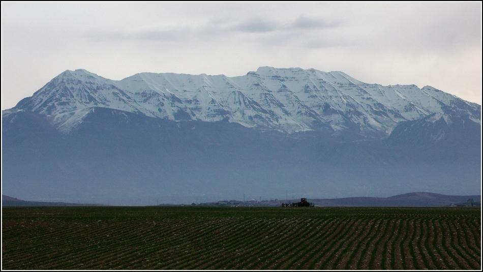Tractor in field under Mt Timpanogos, Utah County, Utah