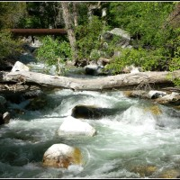 Crossing Little Cottonwood Canyon Stream
