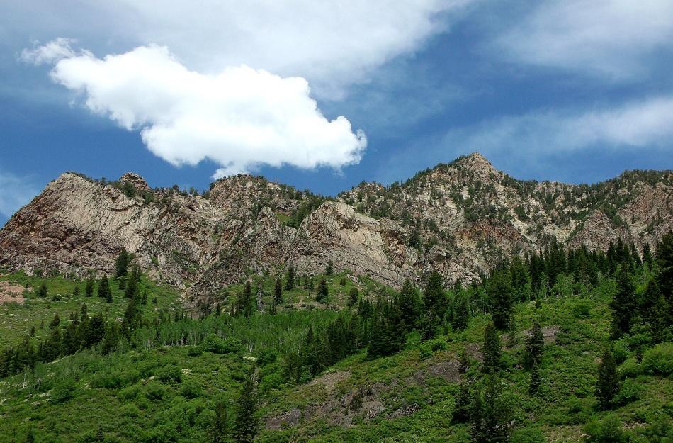 Mineral Fork eastern ridge