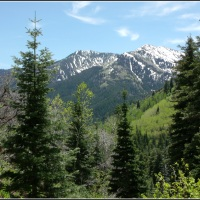 Wasatch Mountain Springtime