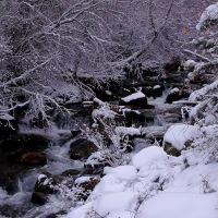 Toward Lake Blanche in November