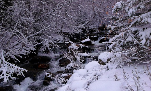 Big Cottonwood Canyon Stream under snow