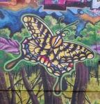Korner Market muralbutterfly