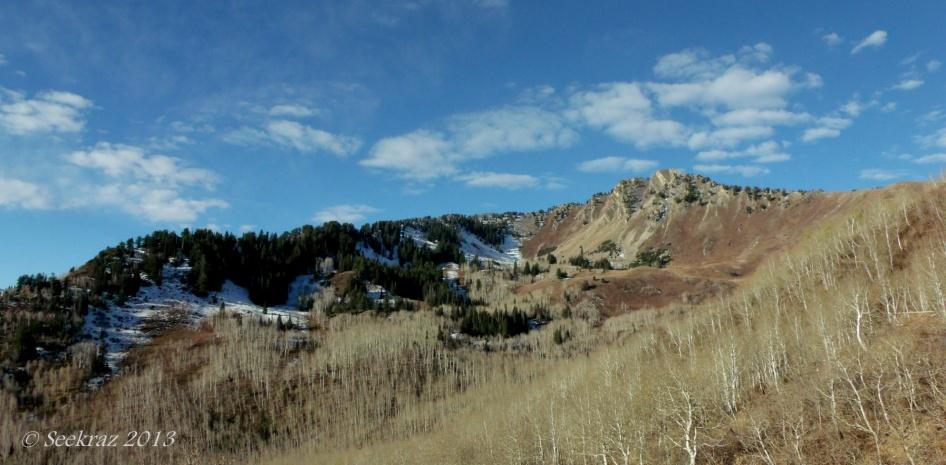 Mt Raymond from Butler Fork Trail