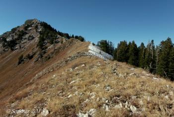 Mt Raymond ridge-line trail