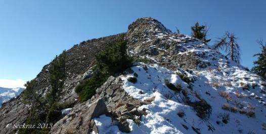 Mt Raymond summit at 10,241 ft.