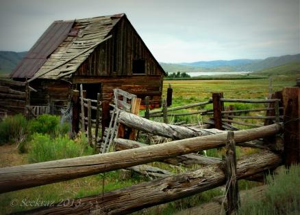 Horse barn near Scofield, Utah.