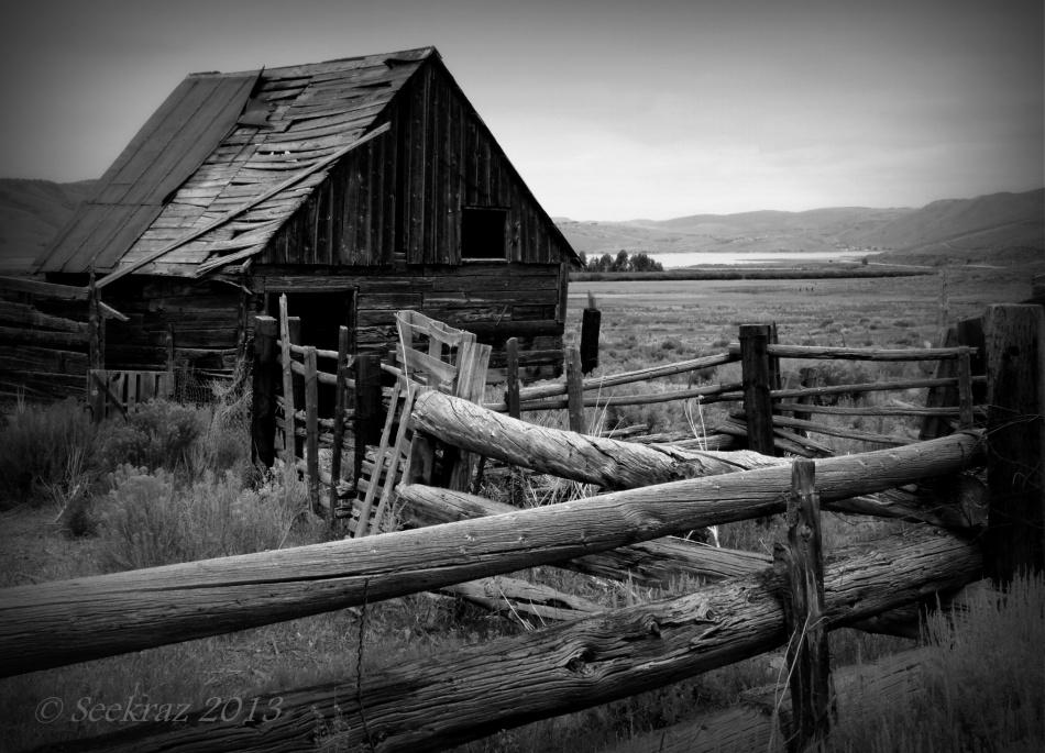 Scofield horse barn in black and white