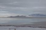 Antelope Island study in white10