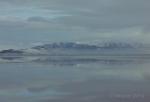 Antelope Island study in white16