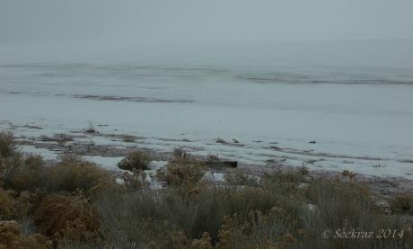 Antelope Island study in white 17