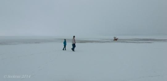 Antelope Island study in white 2