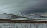 Antelope Island study in white23