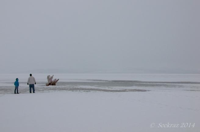 Antelope Island study in white 3