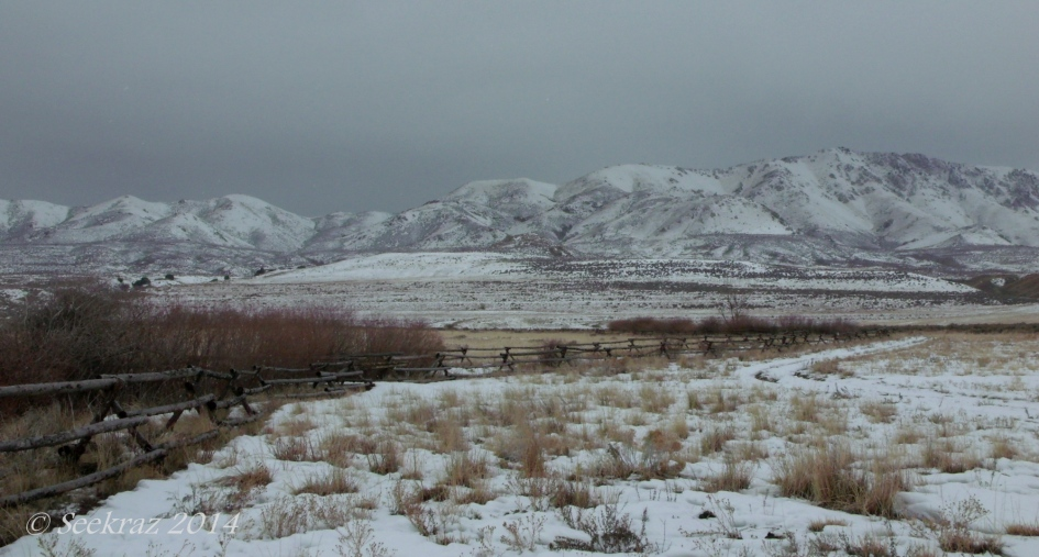 Antelope Island study in white 30