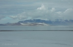 Antelope Island study in white 33