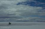 Antelope Island study in white37