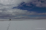Antelope Island study in white39