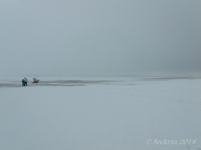 Antelope Island study in white 4