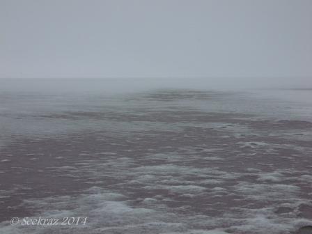 Antelope Island study in white 7