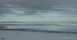 Antelope Island study in white8