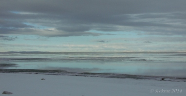 Antelope Island study in white 8