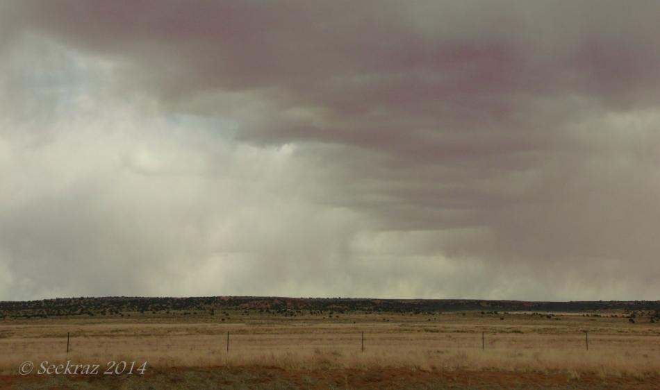 a desert rain