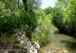 Seven Springs 2