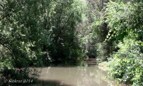 Seven Springs 4