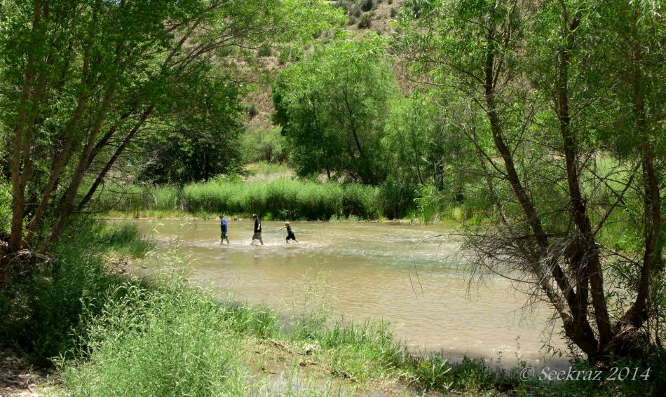 Boys crossing the Verde River