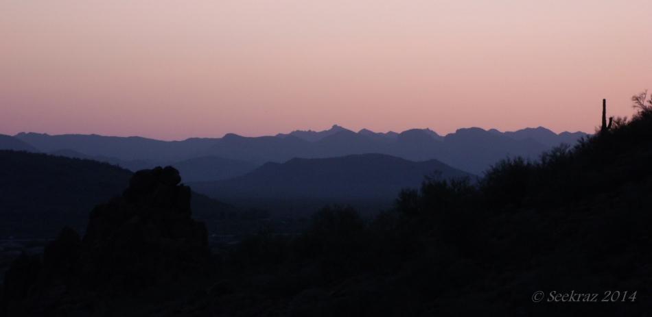 desert sunset silhouette